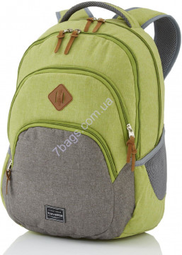 Travelite TL096308-80 BASICS/Green Рюкзак (22л,0,7кг) (31x45x16см)